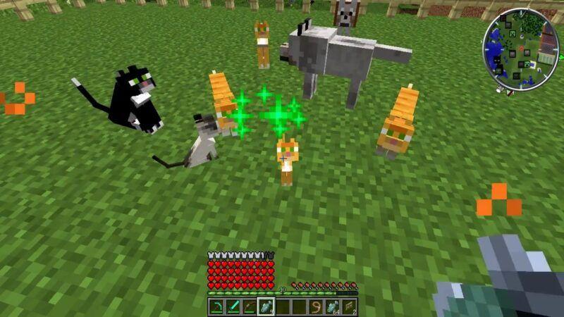 Cómo domesticar un gato en Minecraft