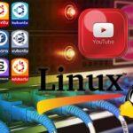 Cómo descargar vídeos de YouTube en Linux