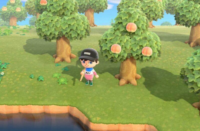 Cómo cortar árboles en Animal Crossing