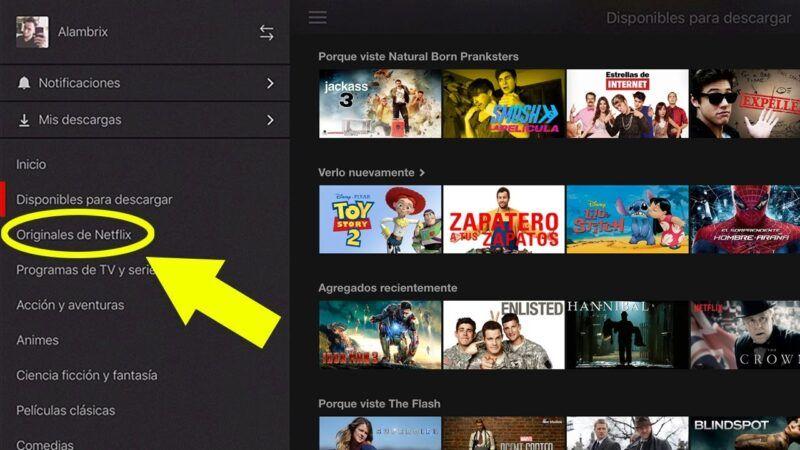 Cómo descargar películas de Netflix al iPad