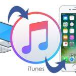 Cómo usar iTunes para copiar CDs en tu iPhone o iPod