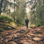 4 Pasos Indiscutibles para Dejar de Vivir una Vida Promedio