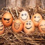 60 citas motivacionales cortas y divertidas para reírse