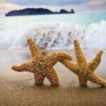 6 razones por las que los emprendedores deben viajar