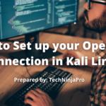 ¿Cómo configurar su conexión OpenVPN en Kali Linux?