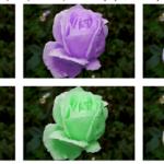Páginas web gratuitas para recolorear imágenes en línea